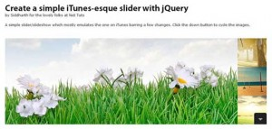 jQuery Techniques and Plugins