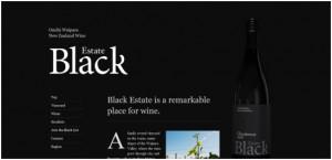 black and white websites
