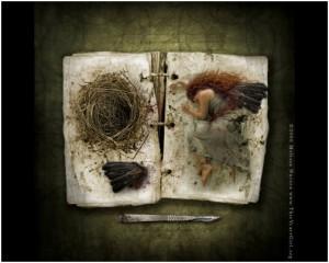 photo manipulation art