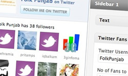 twitter wordpress plugin