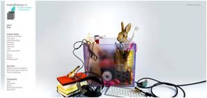 online portfolios