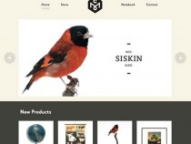 20 Beautiful Examples of Big Images in Web Design