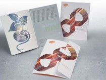 35 More Beautiful Brochure Designs