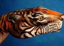 Amazing Hand Painting Art by Mario Mariotti