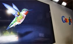 How Can You Take Advantage of Google's Hummingbird Update?