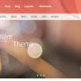 Win A Premium WordPress Theme from Theme Junkie!