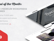 Get 100+ Premium WordPress Themes for Only $29!